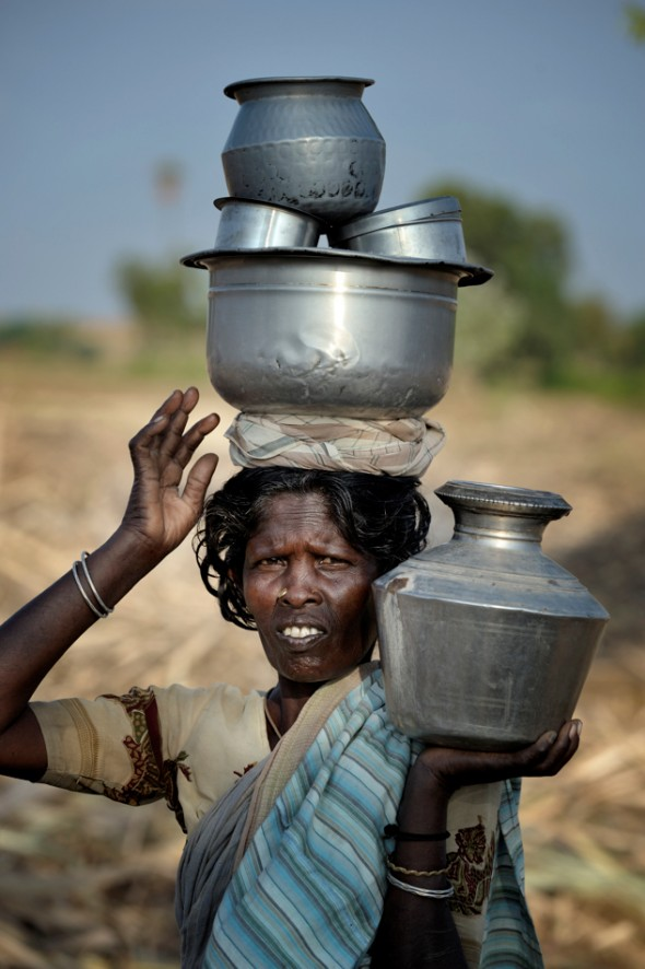 A woman carries food in several pots to workers harvesting sugar cane outside Nallur, a small village in the state of Tamil Nadu in southern India.